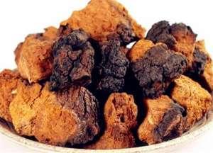 桦树茸价格一般多少钱一斤?为什么中国禁止?